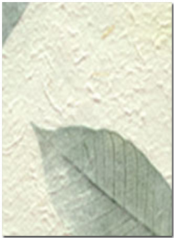 green fossil leaf